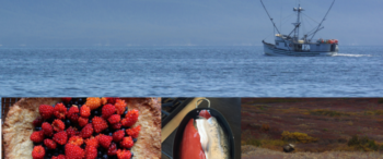 Ensuring Food Safety Following an Oil Spill in Alaska: Regulatory Authorities and Responsibilities